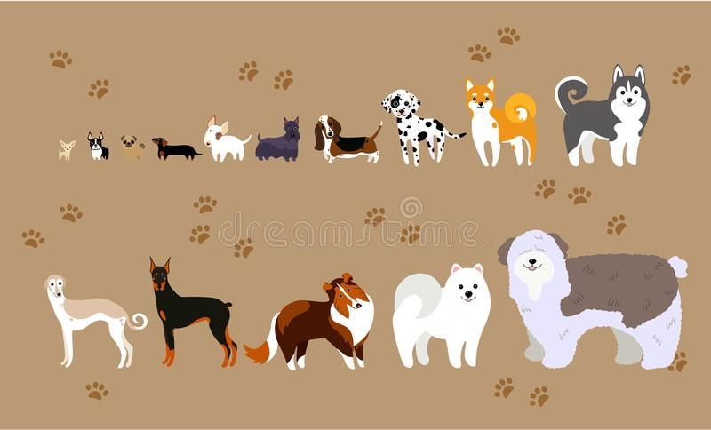 Cartoon dogs of different breeds. Breeds of dogs from pug to shephard royalty free illustration