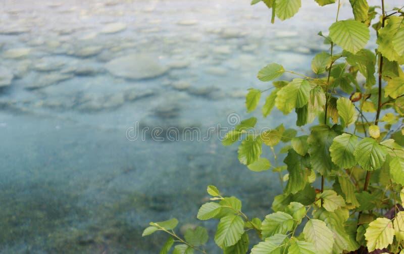 Download Breil-sur-Roya, Alpes-Maritimes, France Foto de Stock - Imagem de feriado, france: 26510438
