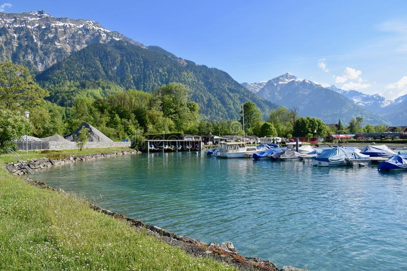 Breinzersee royalty free stock photo