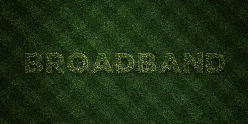 BREITBAND- neue Grasbuchstaben mit Blumen und Löwenzahn - 3D übertrug freies Archivbild der Abgabe stock abbildung