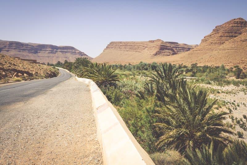Breite Ansicht der Schlucht und der bebauten Felder und der Palmen in Errachidi lizenzfreie stockfotos