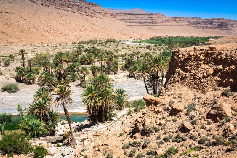 Breite Ansicht der Schlucht und der bebauten Felder und der Palmen in Errachidi stockbilder