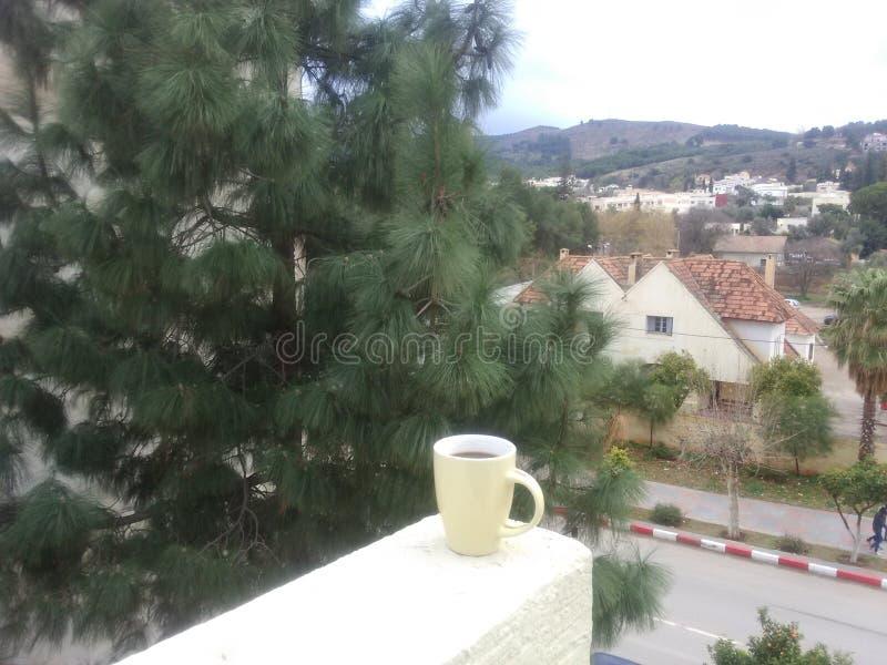 Breite Kaffeeansicht lizenzfreie stockfotos