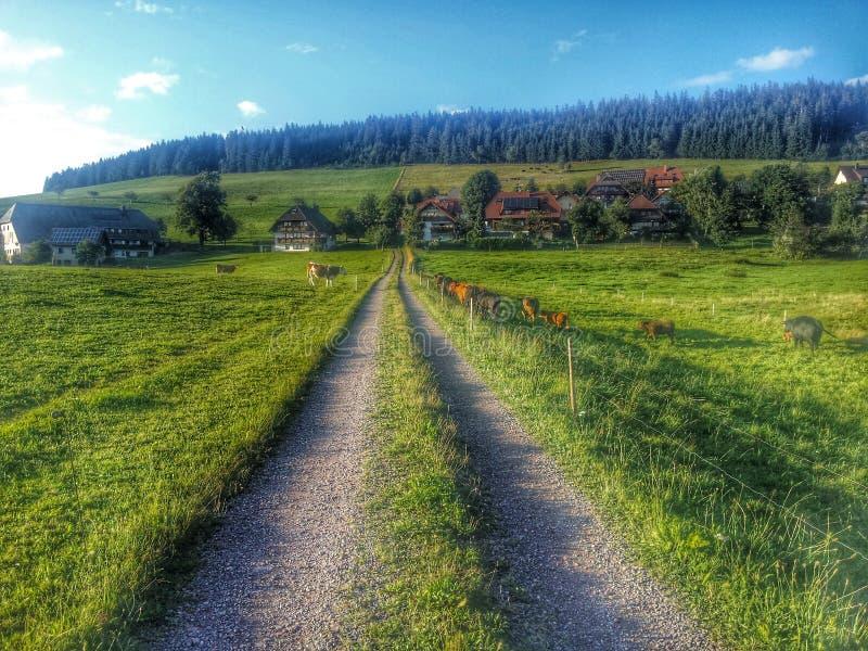 Breitnau, Niemcy fotografia royalty free