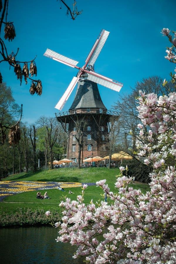 Bremen, Deutschland, Leute, die in einem Park unter einer alten Mühle an einem sonnigen Tag stillstehen stockfoto