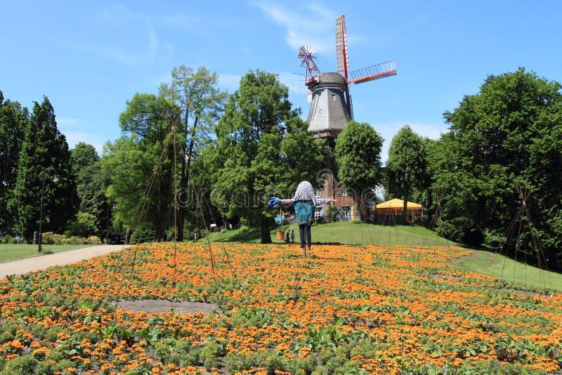 bremen ogrodowa Germany wiosna ściana zdjęcia royalty free