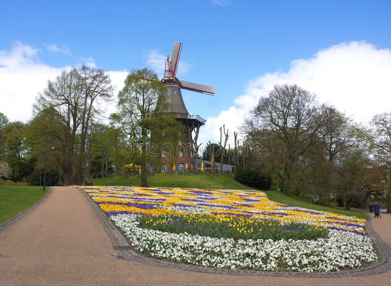 Bremen - väderkvarn i parkera - dropp - royaltyfria foton