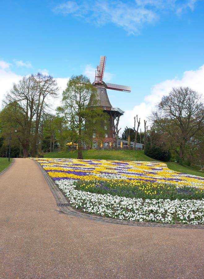 Bremen - wiatraczek w parku - V - fotografia royalty free