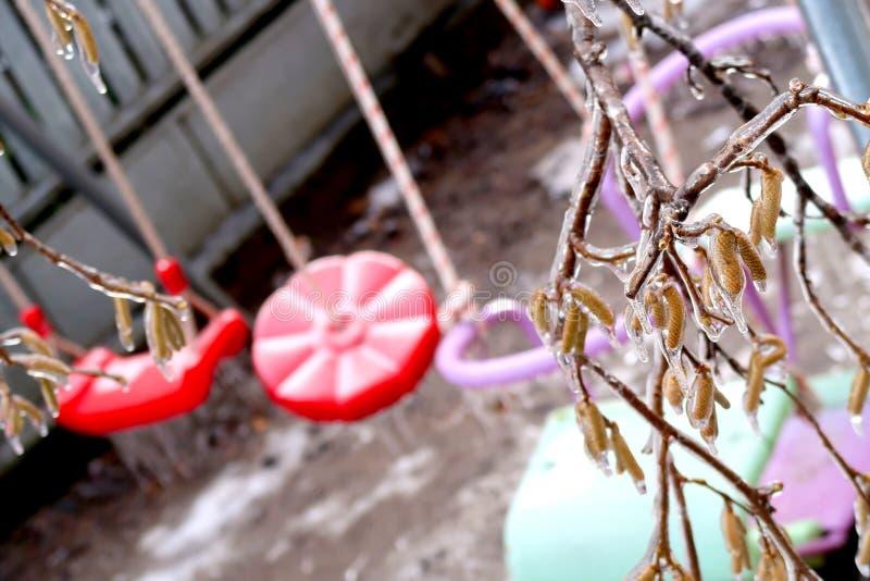 Brench gelé focalisé d'arbre au-dessus des oscillations brouillées pour les enfants pendant l'hiver image libre de droits