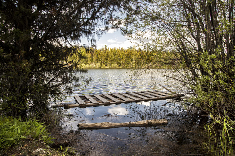 Brenda lake. British Columbia Canada in the summer with nice and cloudy sky and log by shore royalty free stock photo