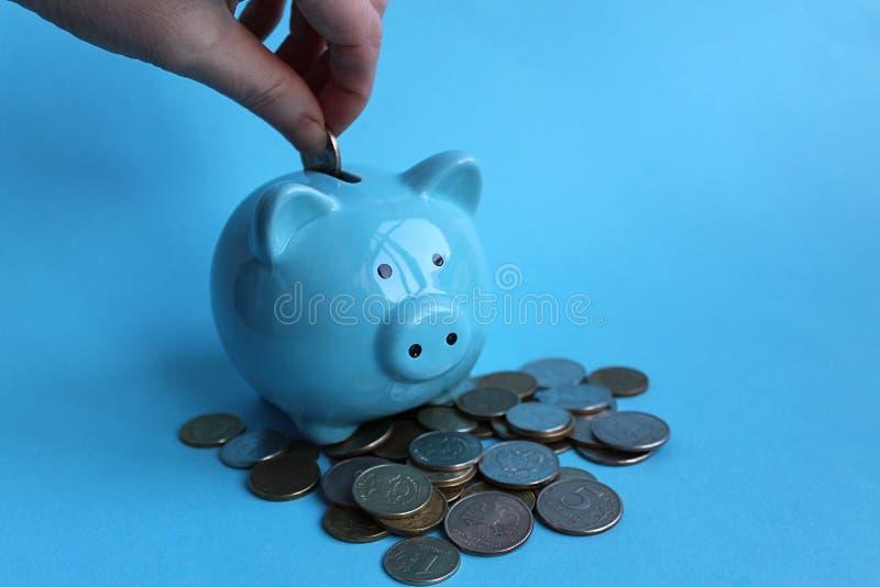 Brengt het Piggy blauwe varken die zich op een stapel van geld en de hand bevinden geld aan royalty-vrije stock afbeelding