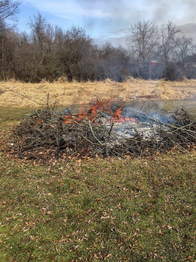 Brennende Bürste mit Flammen und Rauche lizenzfreie stockfotografie
