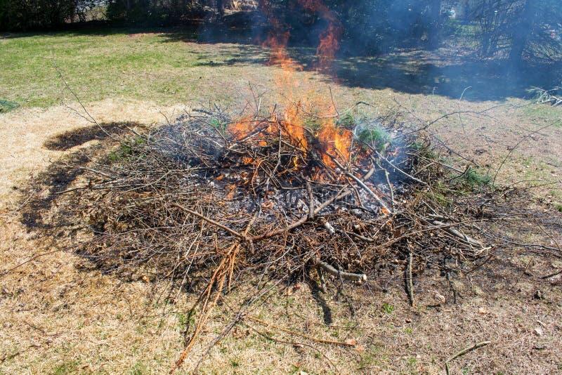 Brennende Bürste und Niederlassungen im Hinterhof lizenzfreie stockfotos