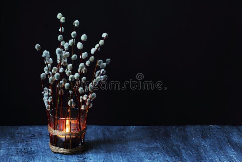 Brennende Kerze im Glasbecher verziert mit Niederlassungen der blühenden Weide gegen schwarzen konkreten Hintergrund gegen schwa lizenzfreies stockfoto