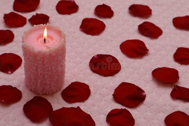 Brennende Kerze und rote rosafarbene Blumenblätter lizenzfreies stockbild