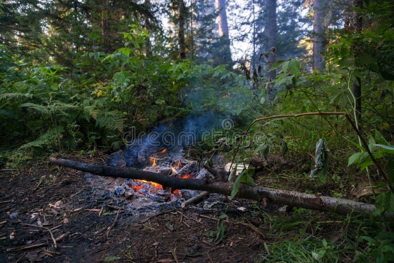 Brennende Kohle lizenzfreie stockfotos