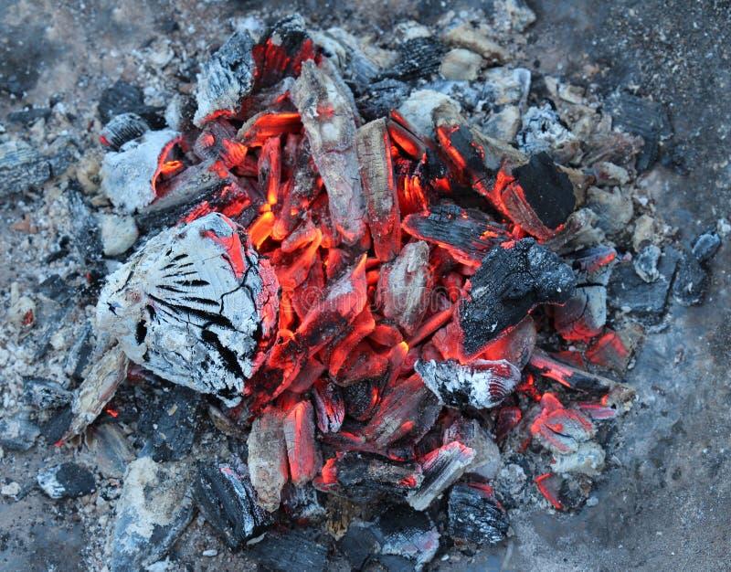 Brennende Kohlen lizenzfreie stockfotografie