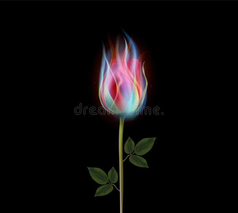 Brennende rosafarbene Blume, Feuer stieg stock abbildung