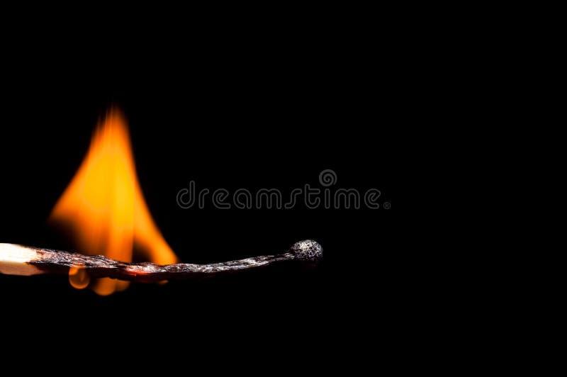 Brennende-unten hölzerne Matchnahaufnahme, auf einem schwarzen Hintergrund Isolatmakroschießen lizenzfreie stockfotografie