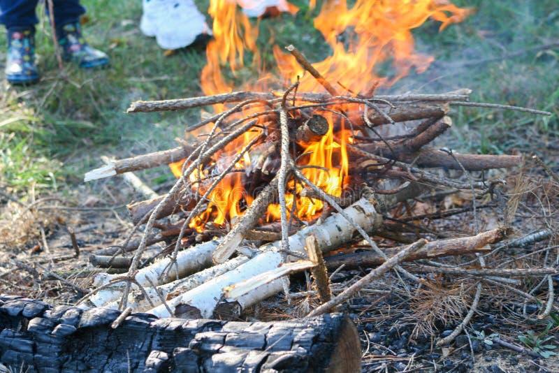 Brennendes Brennholz im Feuer Flammen, die im Grill mit Rauche brennen Brandstiftung oder Naturkatastrophe stockfoto