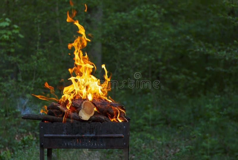 Brennendes Feuer, bereitend, Grill, Grillpartei vor, Sommer grillend, Grill, bbq, Feuer und grillen, Landschaft stockfoto