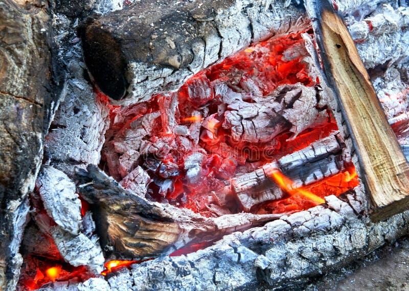 Brennendes Feuer und Kohlennahaufnahme lizenzfreies stockbild