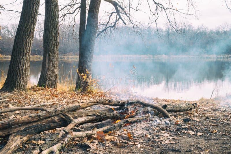 Brennendes Lagerfeuer auf Ufer von einem Herbstwaldsee stockfoto