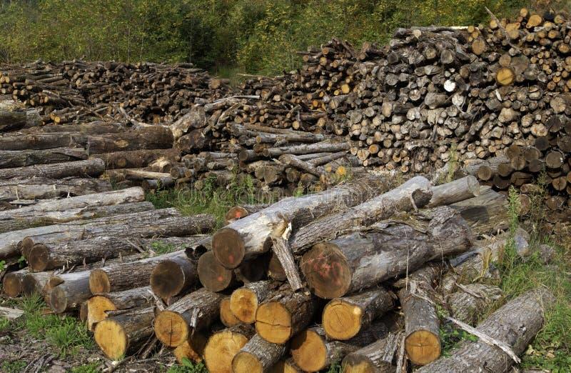 Brennholz lizenzfreies stockbild