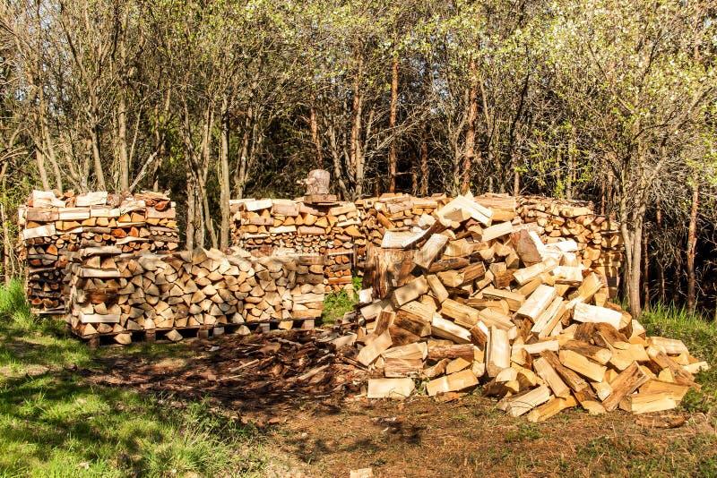 Brennholz auf einem Stapel Vorbereiten f?r den Winter Heizung des grünen Hauses Landwirt- und K?tzchenzufuhrpferd H?lzerner Aussc stockbilder