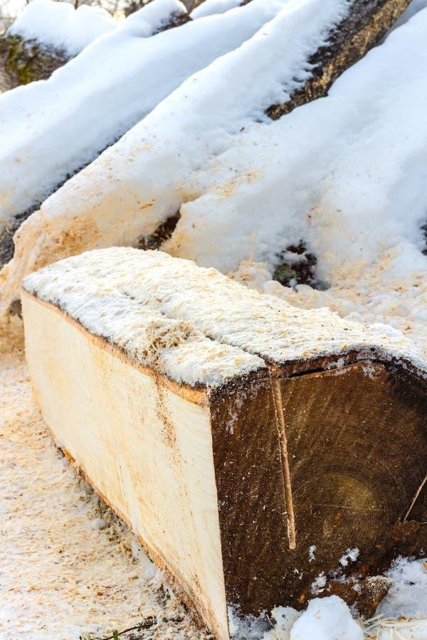 Brennholz bedeckt mit Schnee lizenzfreie stockbilder