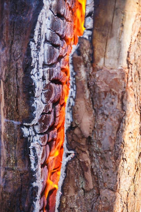 Brennholz, das oben in einem Feuerabschluß brennt kohlen lizenzfreie stockfotos