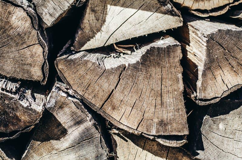 Brennholz-Hintergrund-jährliche Zone lizenzfreies stockfoto