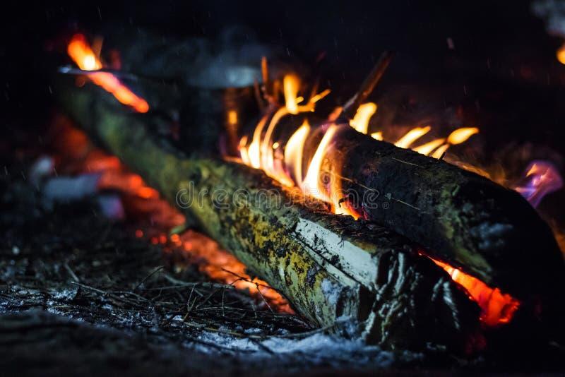 Brennholz im Feuer stockbild