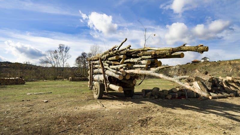 Brennholz meldet Anhänger für Transport an stockfotografie