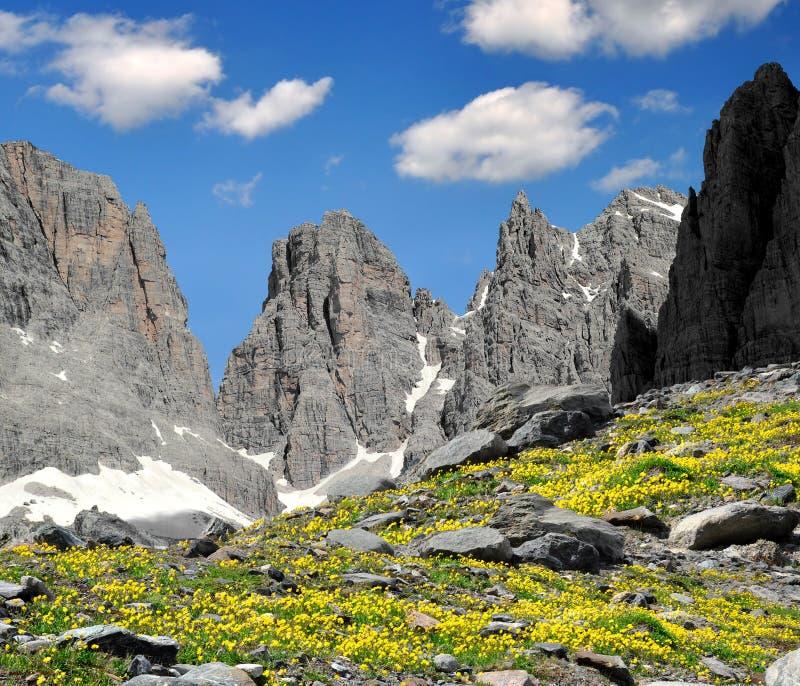 Brenta-dolomiet Italië stock afbeeldingen