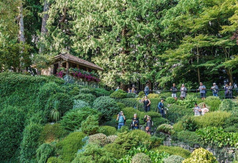 Brentwoodbaai, CANADA - September 01, 2018: Groen decoratief tuin Neutraal landschap met groen gebied royalty-vrije stock foto's