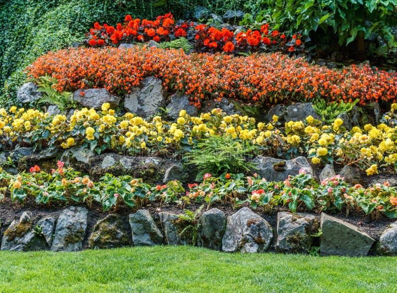 Brentwoodbaai, CANADA - September 01, 2018: Groen decoratief tuin Neutraal landschap met groen gebied royalty-vrije stock afbeeldingen