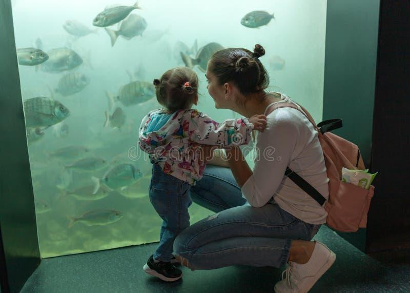 Brest, den Frankrike 31 Maj 2018 mamman och hans lilla dotter ser havsfisken och djur i akvariet av Oceanopolisen royaltyfria bilder