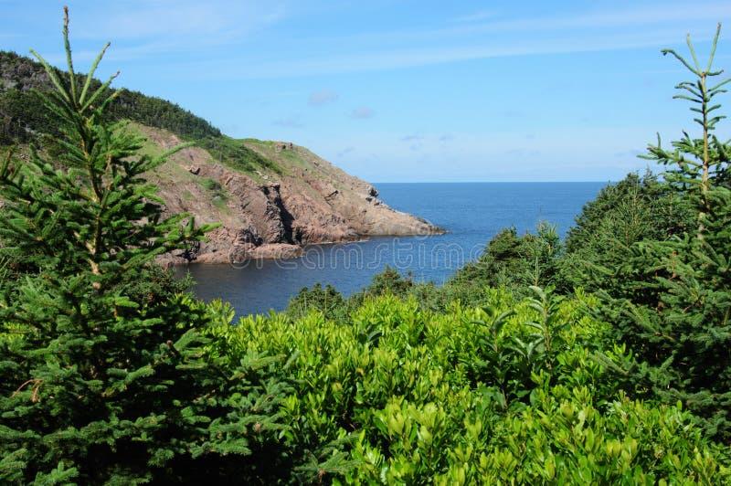 breton гористые местности Nova Scotia плащи-накидк стоковая фотография rf