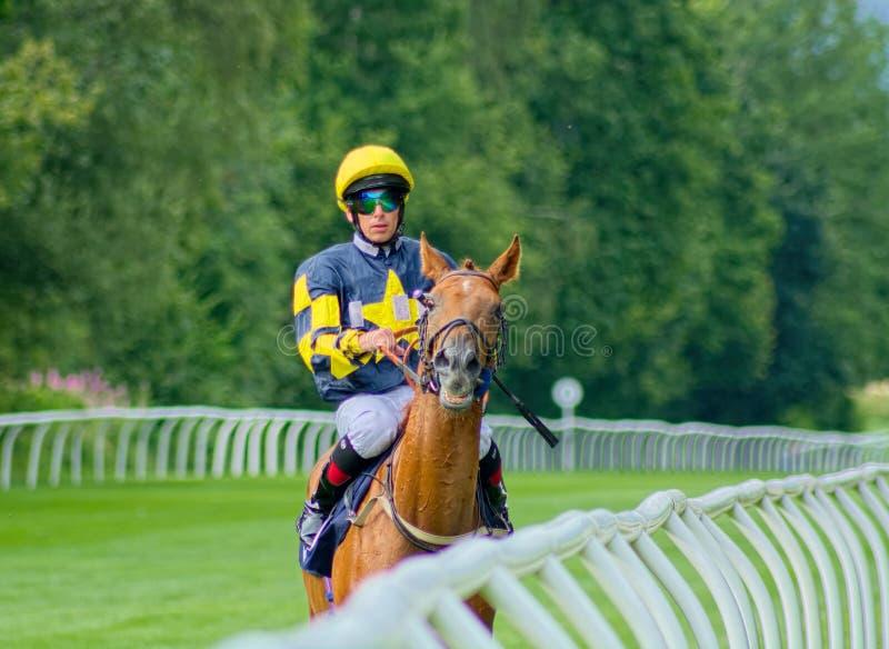 Brett Doyle Horse, der Jockey läuft Gro?britannien stockbild