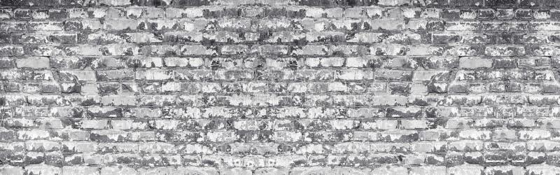 Brett tänd - grå sjaskig textur för tegelstenväggen Gammalt murverk med skalning av vit målarfärg Riden ut panorama- bakgrund för arkivbild