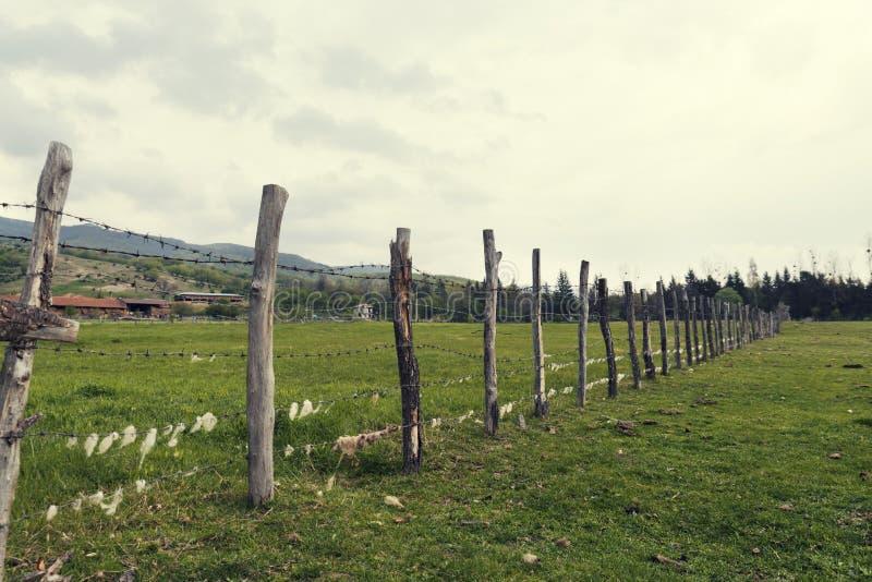 Bretterzaun mit Stacheldraht mit Schafwolle auf ihm in einer Farm der Tiere im Land lizenzfreie stockfotografie
