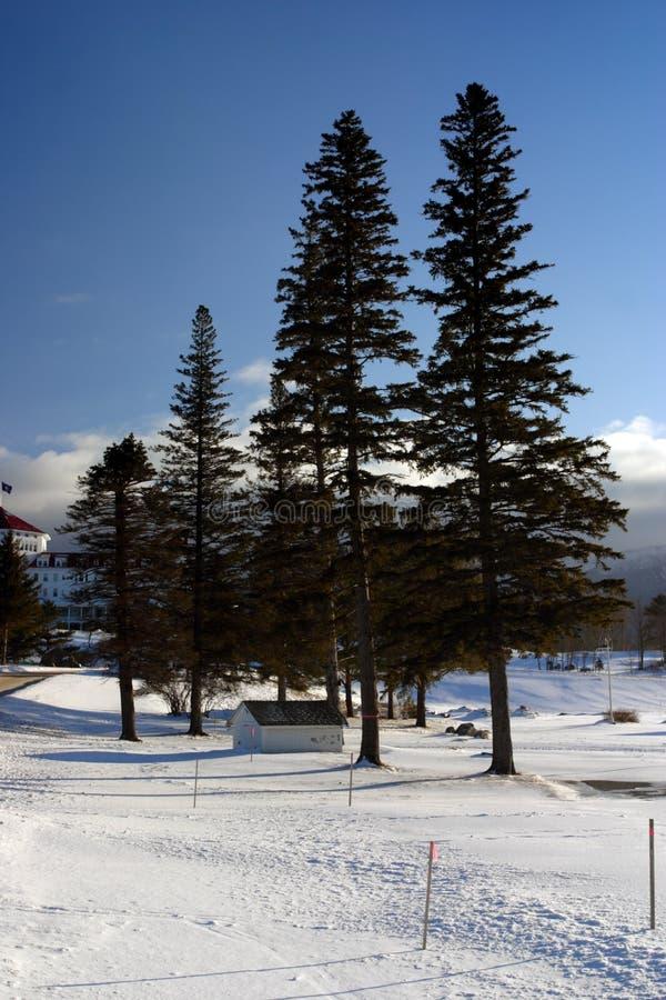 Bretton Woods, Van Newhampshire royalty-vrije stock fotografie