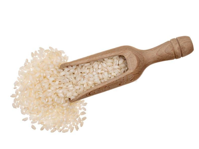 Breve riso del risotto del grano, con il mestolo di legno, isolato su fondo bianco fotografie stock