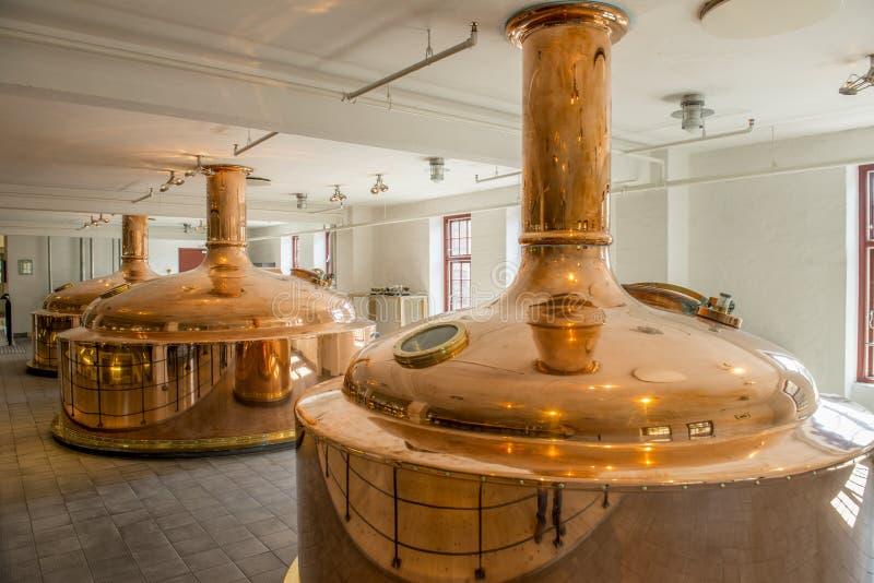 Brew Карлсбурга стоковое фото rf