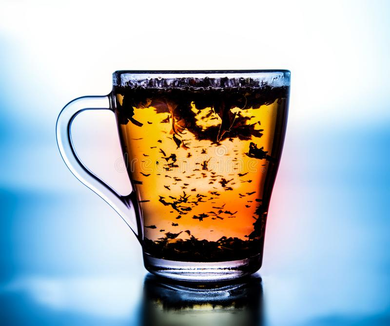 Brewed herbal tea in a glass cup. High contrast. Saturated colors. White background light and blue at the edges. Close-up royalty free stock photos
