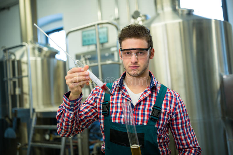 Brewer testing beer. Portrait of brewer testing beer at brewery factory royalty free stock image