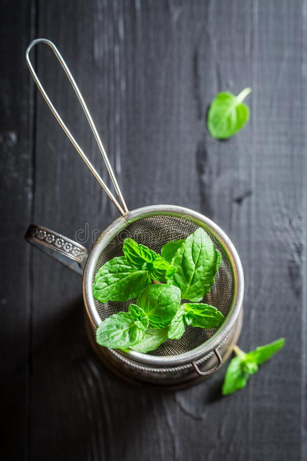 Brewing fresh and aromatic green tea royalty free stock images