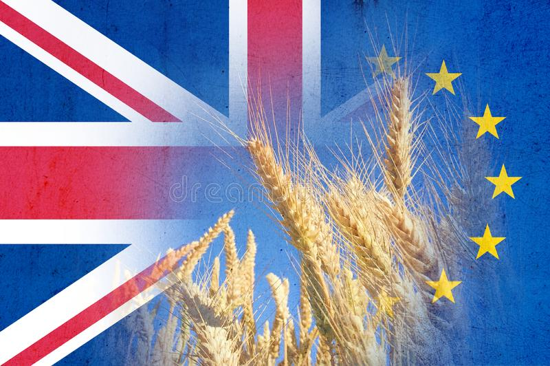 Brexit concept. A field of wheat With the flags of the Union Jack and the E.U over layered on top royalty free stock photography