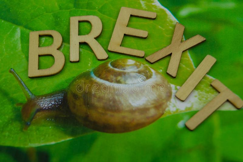 Brexit slowly like a snail royalty free stock images